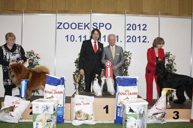 121913488 fourth chance lietiuvos liutas_fci cacib dog show zooexpo 2012 riga latvia cacib bob big 1 biss 2