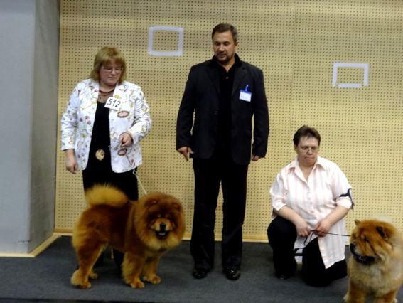 255772196 fourth chance lietuvos liutas_11 12 2011_dog show in liepaja_judge_ stefan popov bulgaria_bob