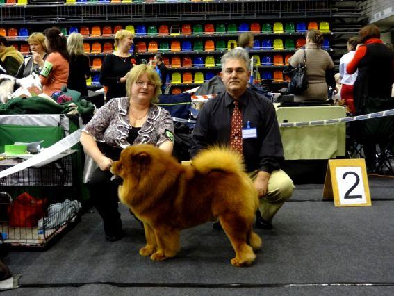 575403979 fourth chance lietuvos liutas_2011 12 10 _dog show in liepaja_judge cristian petre stavarache rumunia_625